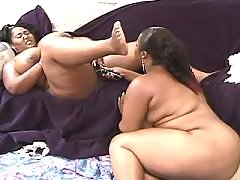 Porn adventure with busty fat chick black chubby porn